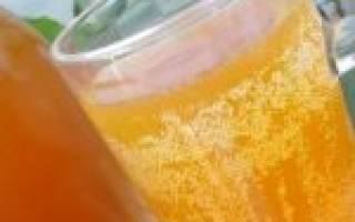 Медовый квас рецепт