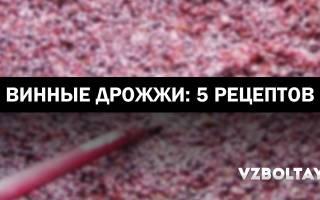 Вино домашнее с дрожжами рецепт