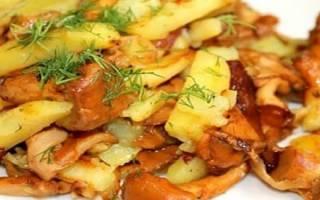 Лисички жареные: рецепт приготовления с картошкой
