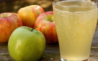 Брага из яблочного сока рецепт