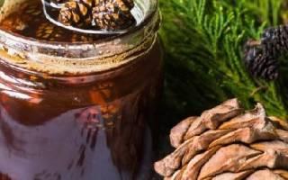 Варенье из шишек сосны рецепт