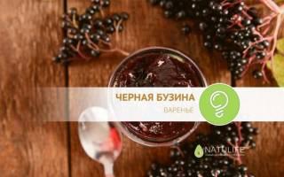 Варенье из черной бузины рецепт