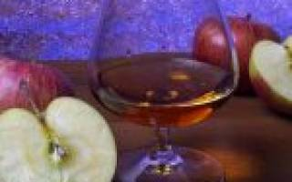 Как сделать кальвадос из яблок в домашних условиях: простой рецепт
