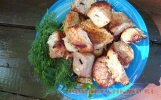Шашлык из свинины, маринованный в лимонном соке рецепт