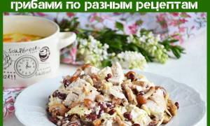 Грибной салат с фасолью рецепт